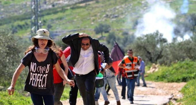 Palestina Israele 16 marzo 2016