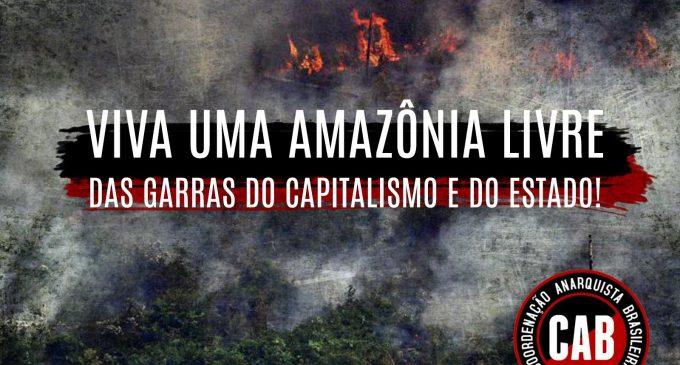 VIVA UN'AMAZZONIA LIBERA DALLE GRINFIE DEL CAPITALISMO E DELLO STATO!